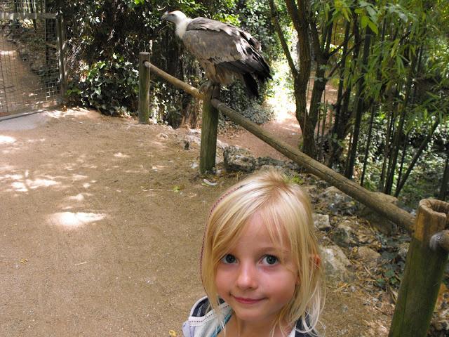 Notre visite au Bioparc de Doué la fontaine