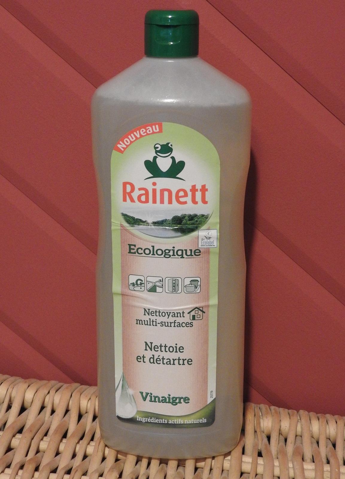 Rainett s'est invité à la maison pour laver du sol au plafond!