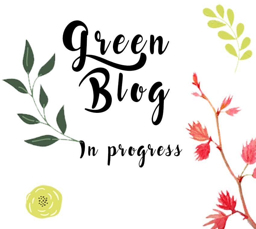 Etre en accord avec sa consommation, 1ère étape du Défi green blog!